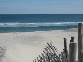 judy beach
